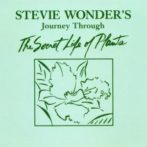 stevie-wonder-journey-through-the-secret-life-of-plants